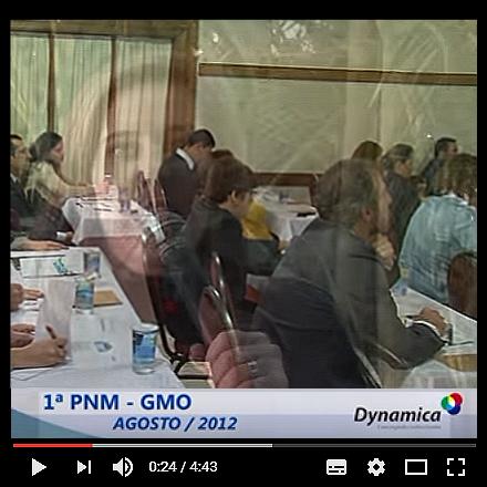 pnmgmo10anos1